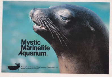 Mystic Marinelife Aquarium Advertisement - Greater Mystic Chamber of Commerce Visitor Guide