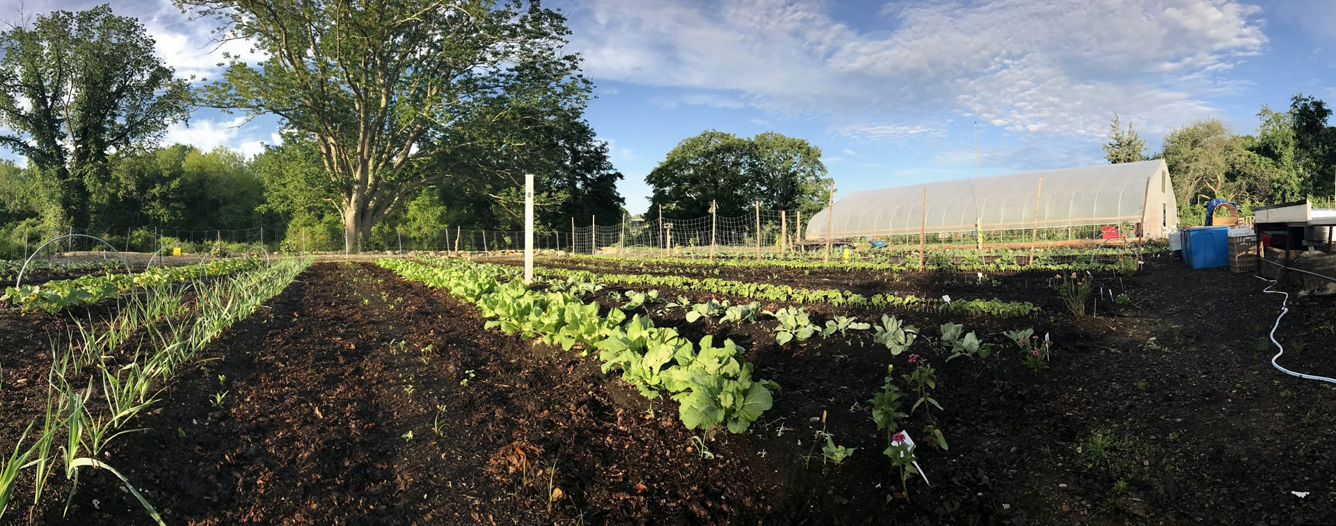 Giving Garden at Coogan Farm
