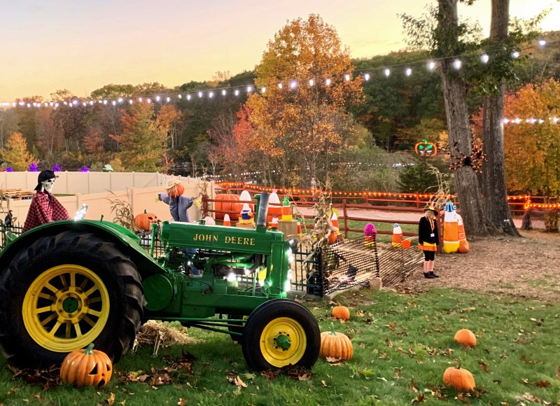 The Pumpkin Place