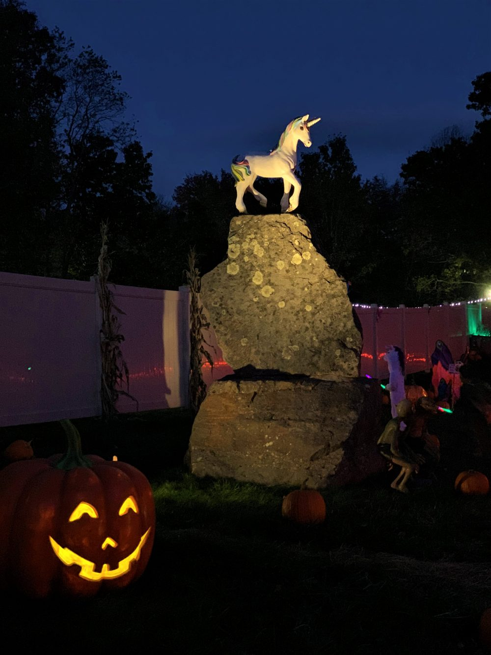 Unicorn Pumpkin This Is Mystic Ct