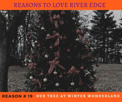 Reasons to Love River Edge - Tree at Winter Wonderland