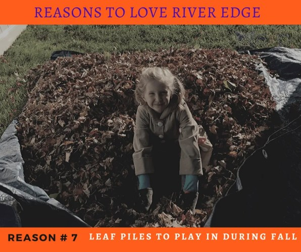 Reasons to Love River Edge - Leaf Piles