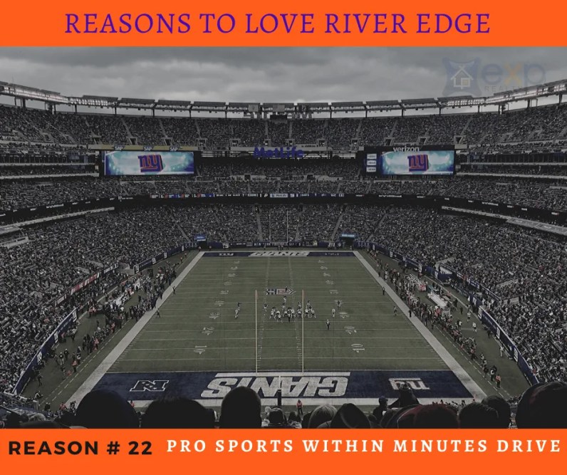 Reasons to Love River Edge - Pro Sports Nearby