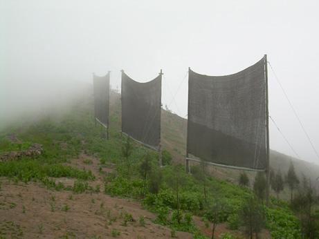 Fog-harvesting-peru