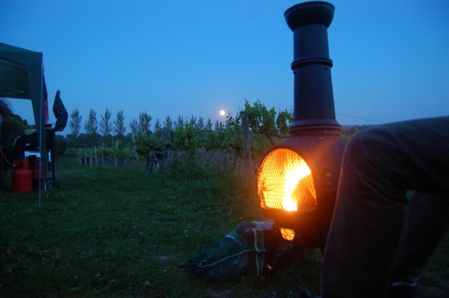 moon-vinyard