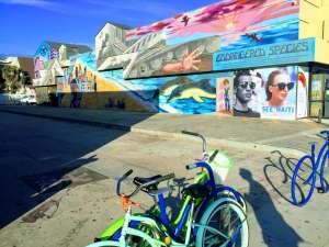 graffitis en Vneice Beach