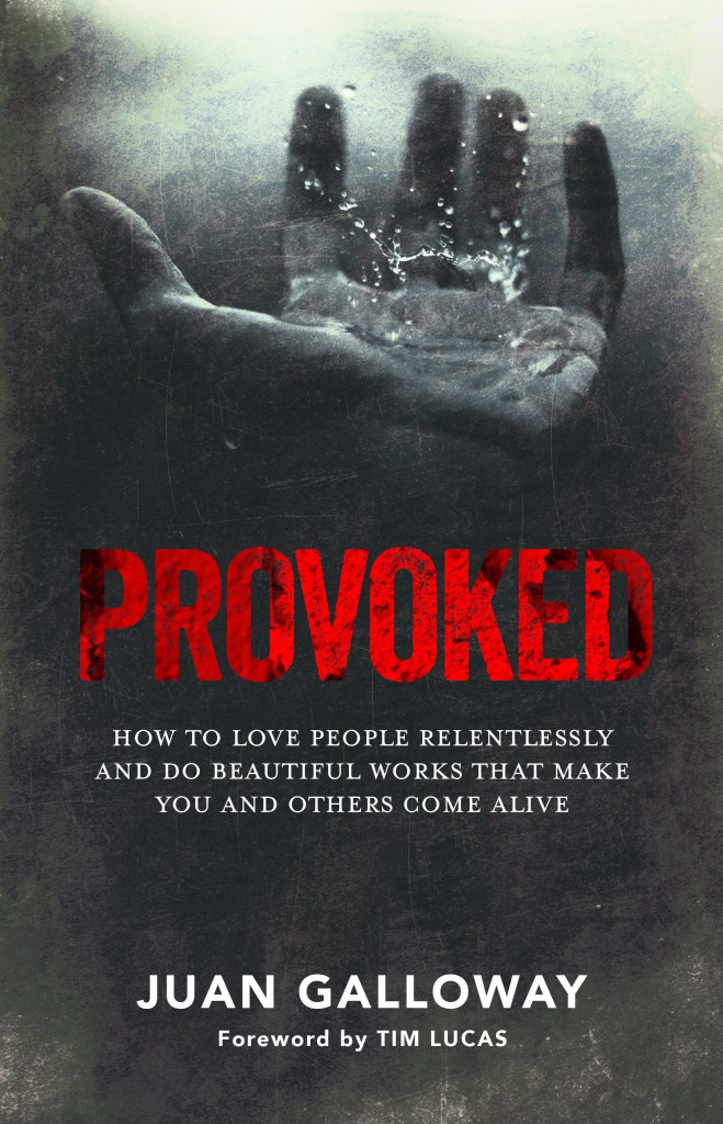 PROVOKED FRONT COVER