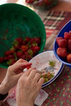 Équeuter les fraises