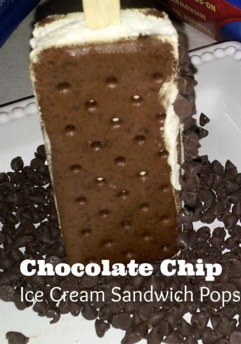 Chocolate Chip Icecream