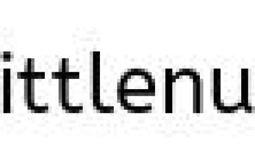 Signs of Spring Bingo