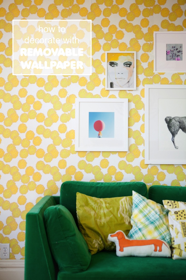 Decorate with amazing removable wallpapers  This Little