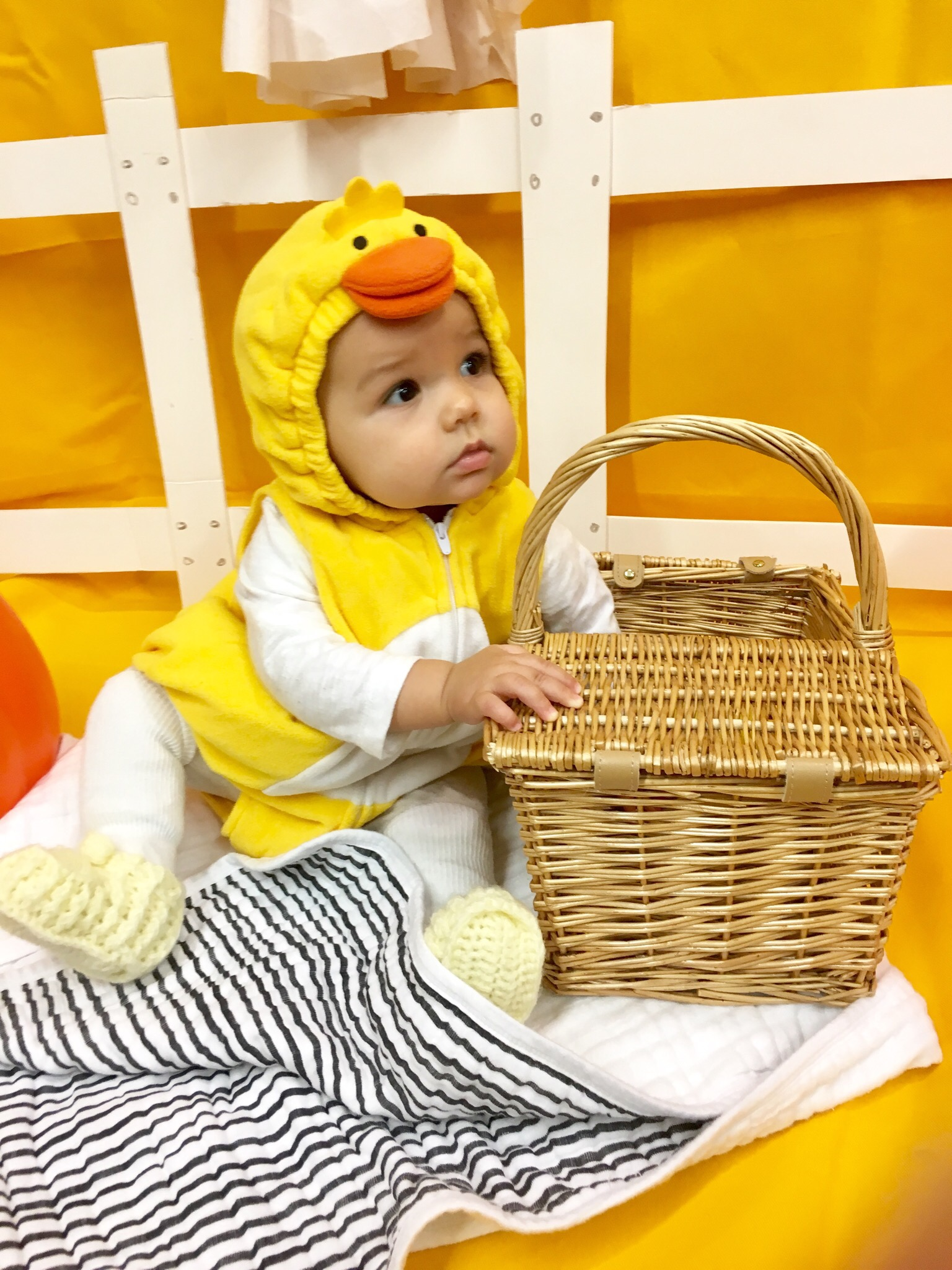 Baby's First Halloween and Library Babytime