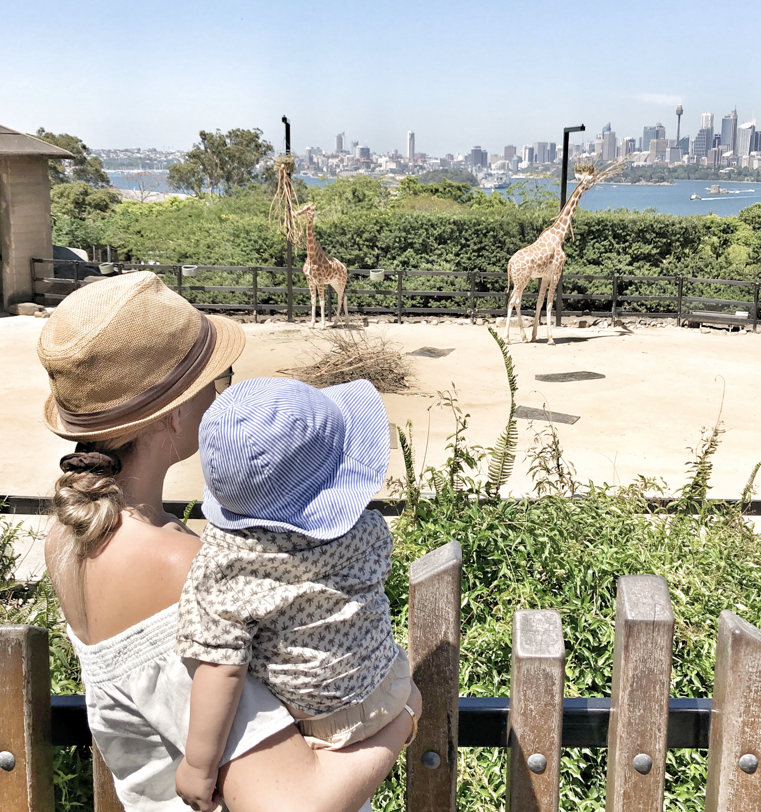 Hudson's first trip to the Zoo