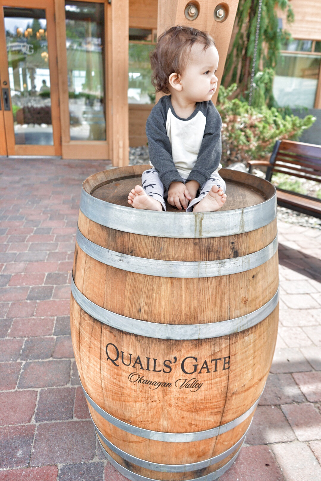 baby on a barrel of wine