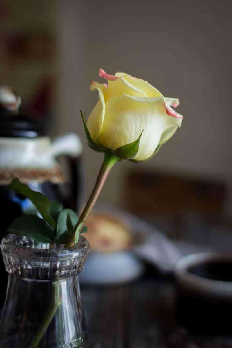 5 Delicious Ways to Celebrate Mom with Roses by @beardandbonnet and @vigorandsage on www.beardandbonnet.com
