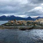 Isla de los lobos da lontano