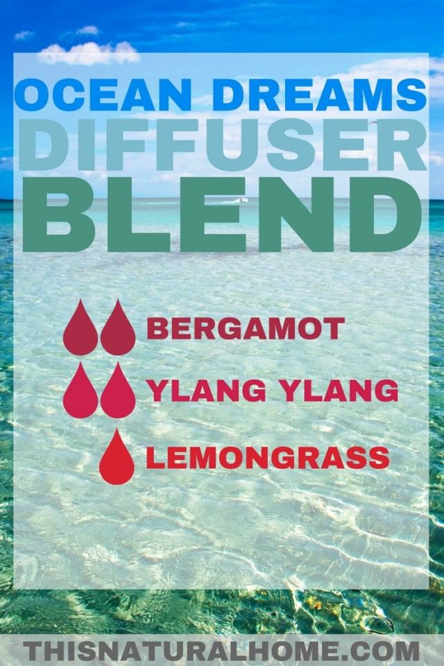 Summertime is right at your fingertips! These amazing summertime diffuser blends will have you relaxing on the beach no matter what the temperature is outside!