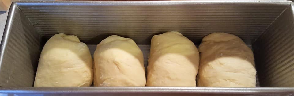 Place Rolled Dough into Pullman Pan