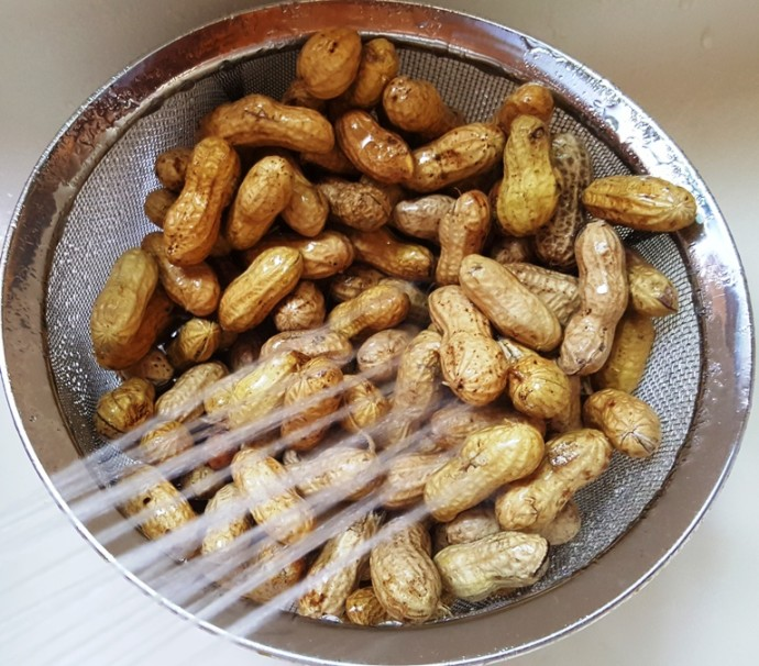 Rinse Peanuts and Remove Debris, Dirt and Twigs