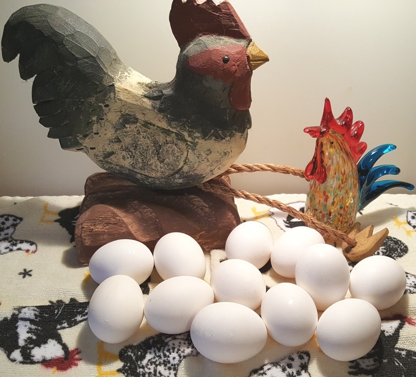 Cast of Ingredients for Instant Pot Hard Boiled Eggs