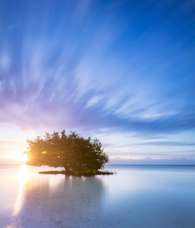 annes-beach-sunburst-le-sunrise