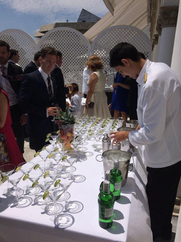 Gin Fizz Martinis