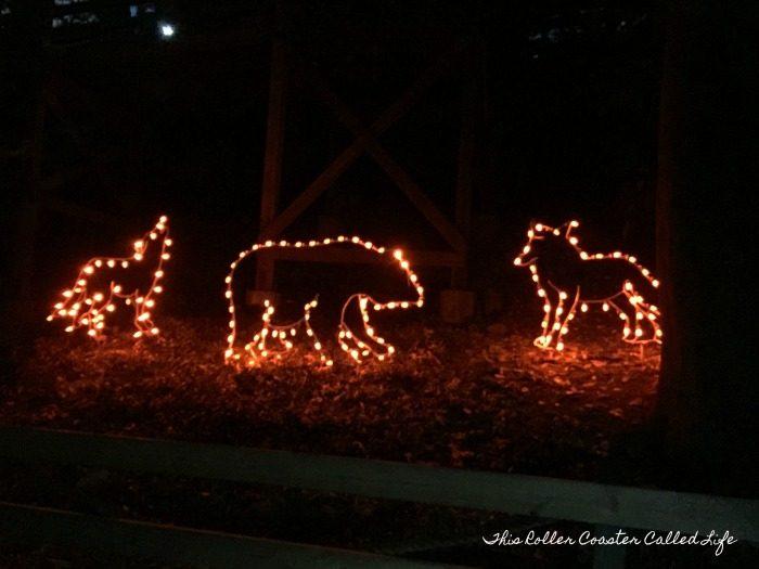 Zoo Lights Admission Price