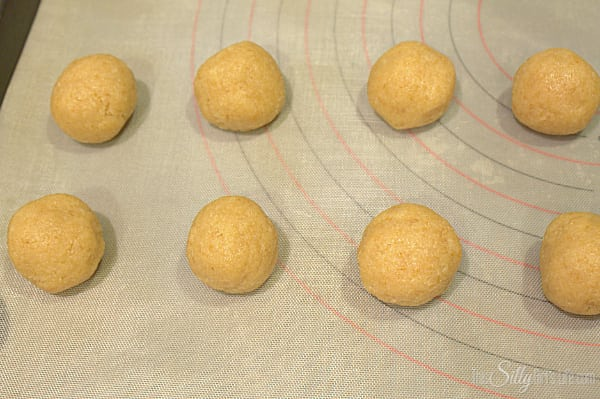Using a tablespoon or a tablespoon scooper, scoop the crumbs and roll into balls. Place in the freezer for at least 30 minutes.