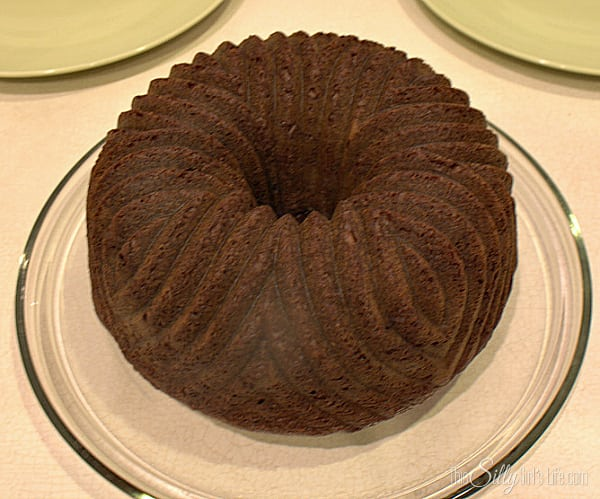 Preheat oven to directions on back of cake mix. Mix all ingredients until combined, 2 minutes. Spoon into bundt cake pan and let cook to directions on back of package. Let cake cool on wired rack for 10 minutes then take cake out of the pan and on the wire rack to cool completely.