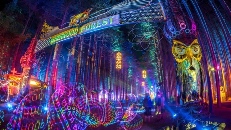 Electric Forest Powerpoint