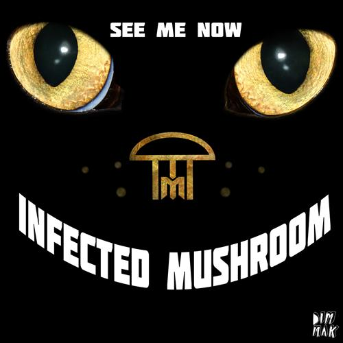 Infected Mushroom – See Me Now : Bass Heavy Trance / Dubstep [TSIS PREMIERE]