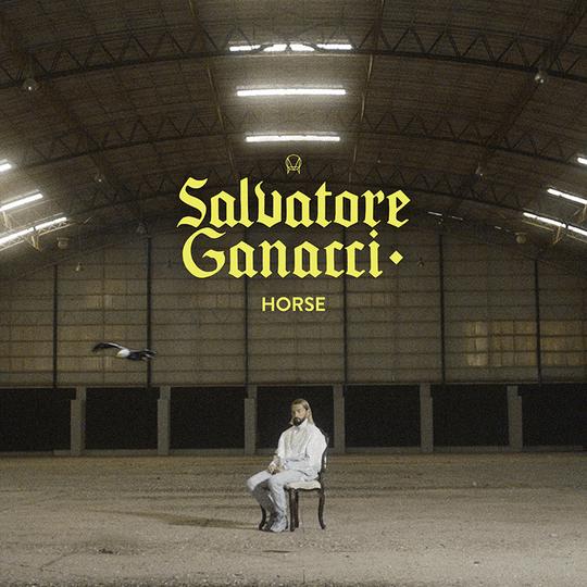 Salvatore Ganacci - Horse Artwork