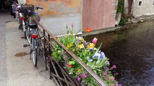 Flowers and bikes on bridge