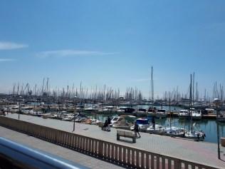 Palma harbour