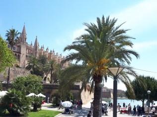 Palma views
