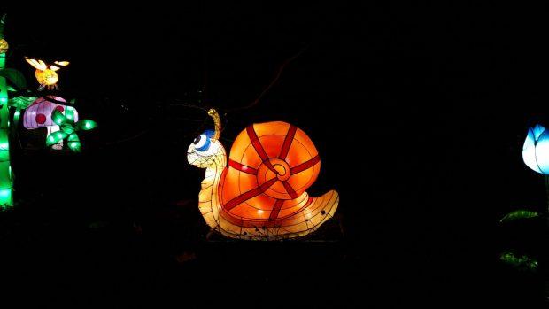 Birmingham Magic Lantern Festival - brightly coloured snail