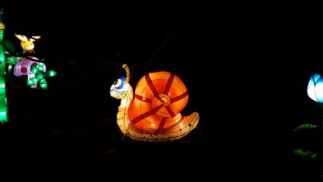 Birmingham Magic Lantern Festival - brightly coloured snail