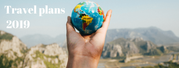 Travel plans 2019 - hand holding small globe
