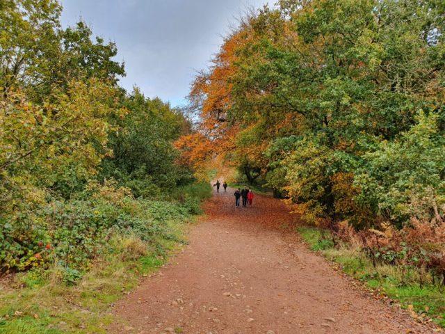 Autumn Winter Clent Hills