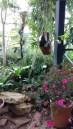 Inside Botanical Gardens at Parc de la Tête d'Or