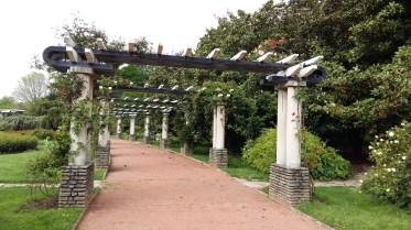 Rose trellis Parc de la Tête d'Or