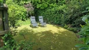 Garden loungers