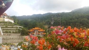 Flowers at Kek Lok Si temple