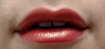 Urban Decay Vice Lipstick Carnal Wildfire Amp Studded