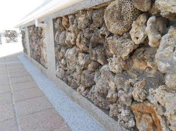 Many walls are made with dried coral!