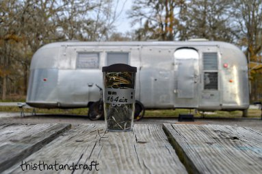 Airstream Tervis 002