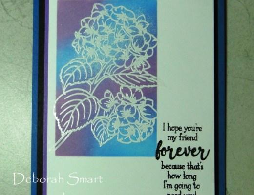 Another Heartfelt Hydrangea