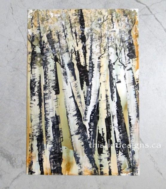 Unique Birch Trees