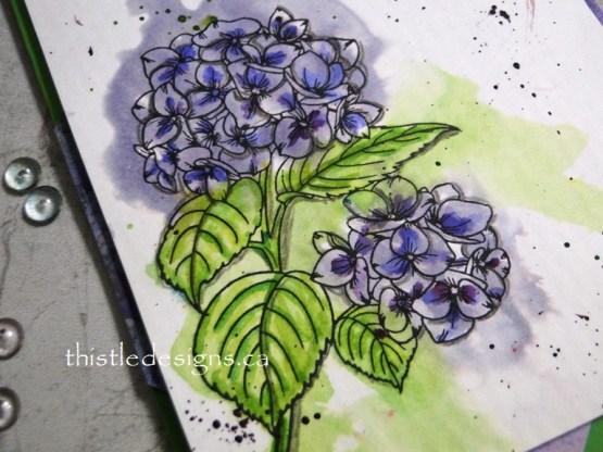 Misted Watercolour Technique