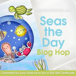 Did You Seas The Day?
